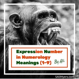 Expression Number in Numerology Meanings